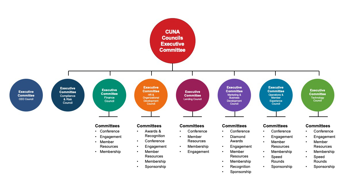 CUNA Councils Committee Structure